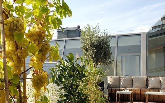 Трендовый гастрономический ресторан в Париже 39V, солнечная терасса