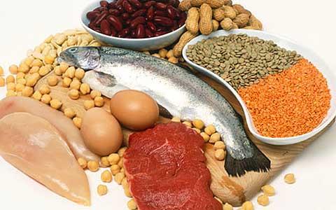 Продукты богатые протеинами